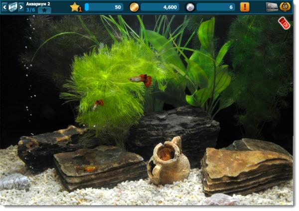 игра аквантика 3d аквариум